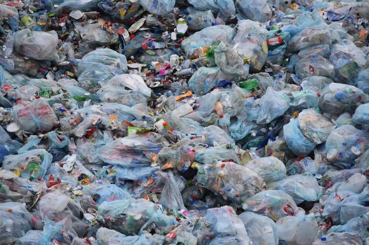 Жизни миллионов россиян находятся под угрозой из-за мусора