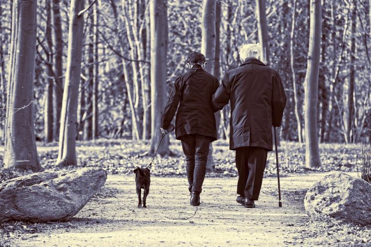 Петицию против повышения пенсионного возраста подписали почти 2 млн человек