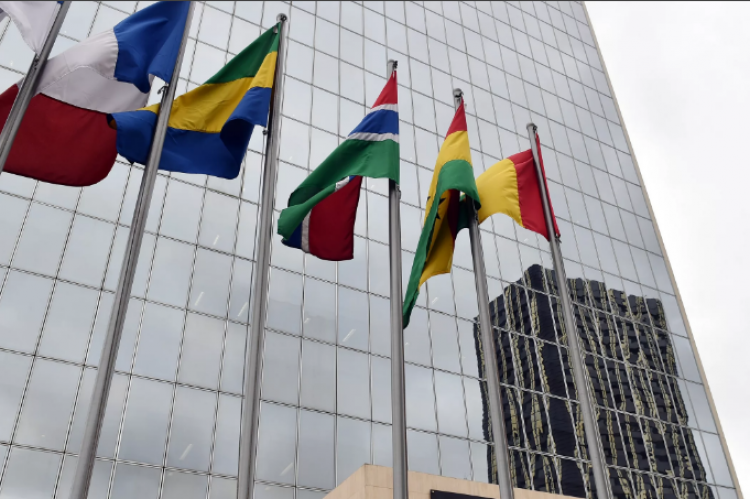 Европа оказалась готова к кризису хуже Африки