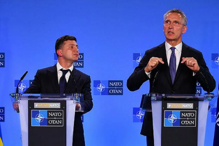 Зеленский назвал членство в НАТО единственным путем к миру в Донбассе