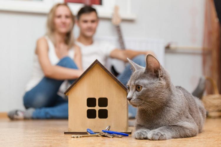 Семейная пара и кошка возле макета дома