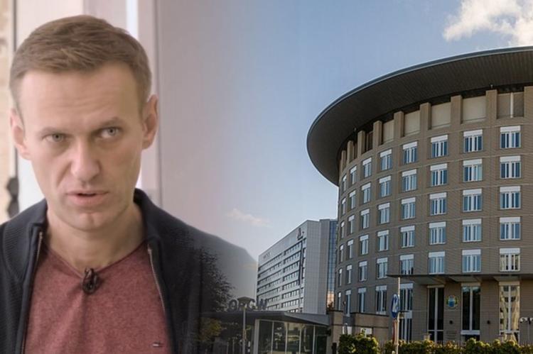 Алексей Навальный и штаб-квартира ОЗХО