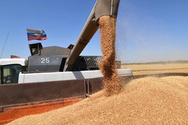 Экспорт российской пшеницы