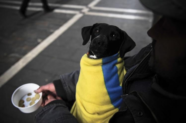 Долговой кризис на Украине вступил в острую фазу