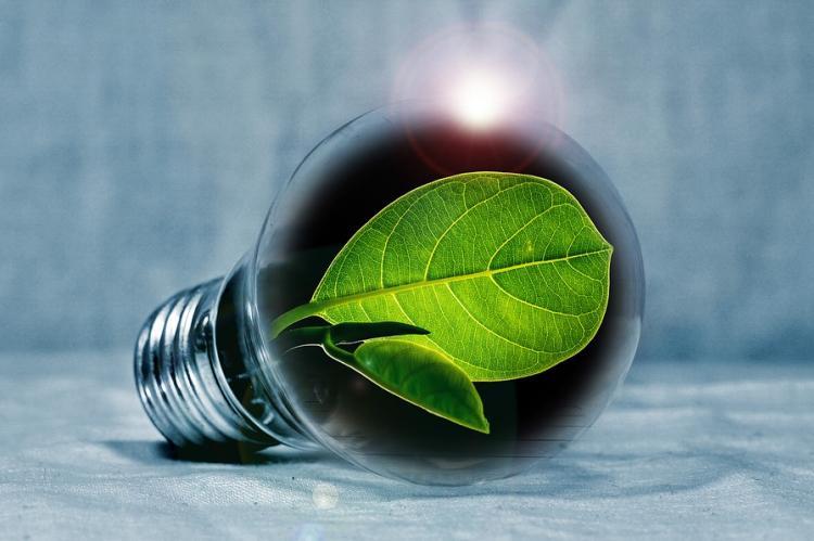 Минприроды предлагает использовать зеленую энергетику для майнинга криптовалют