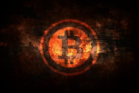 Стив Возняк отдал мошеннику 7 биткоинов