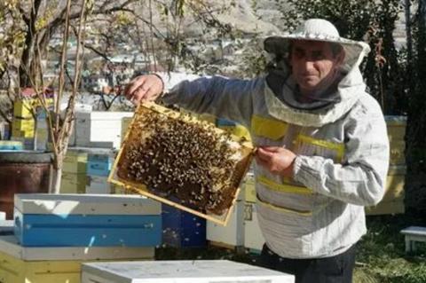 Пчеловод за работой