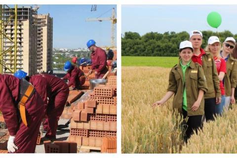 Работа на стройке и в сельском хозяйстве