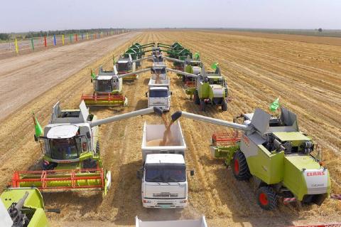 Bloomberg: пшеничные планы России побудили экспортеров на крайние меры