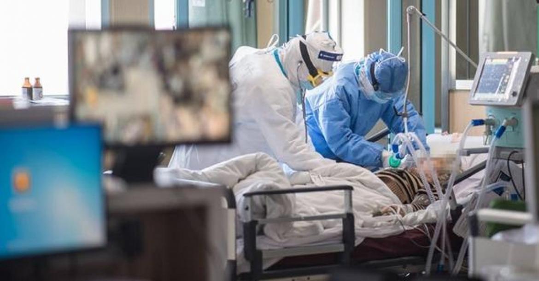 Эксперт: высокий уровень лимфоцитов в крови снижает риск заражения коронавирусом