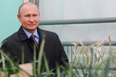 Россия продолжает завоевывать рынок сбыта пшеницы