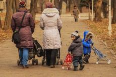 В России предложили ввести «многодетный» капитал